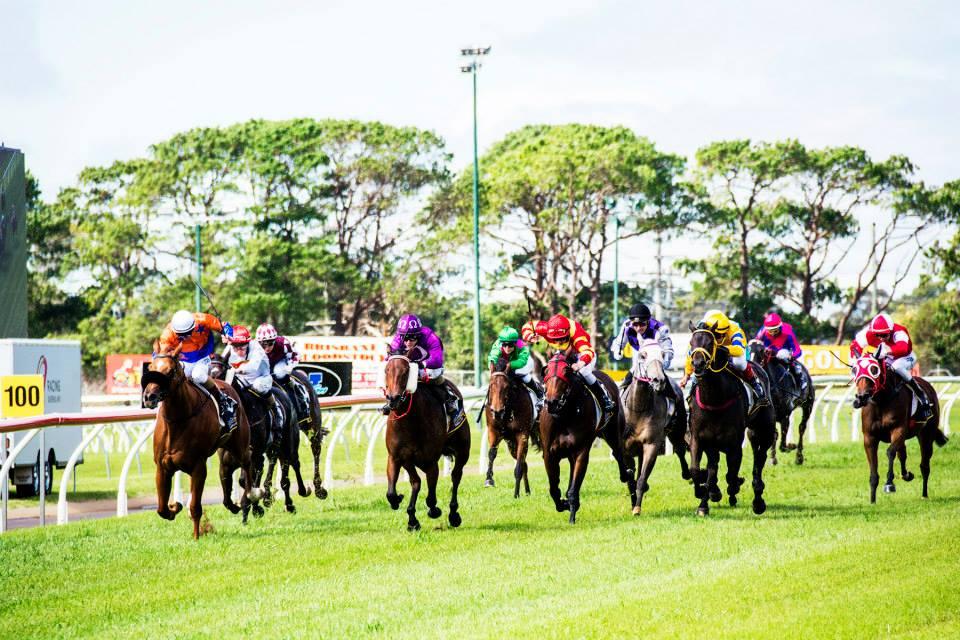 Weetwood Raceday 2016