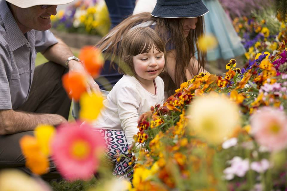 Get Ready for Toowoomba Carnival of Flowers 2020!