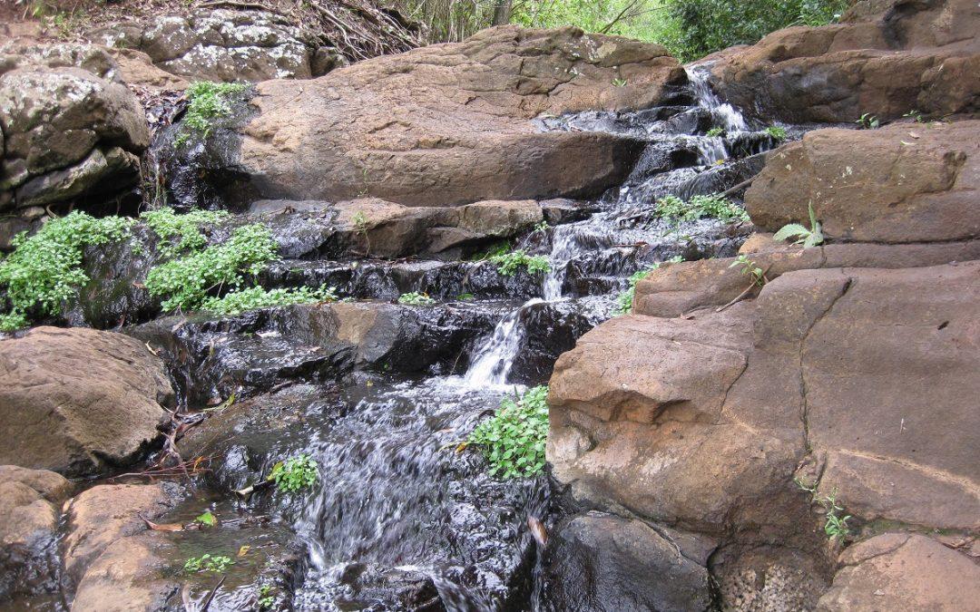 Highfields Falls Toowoomba